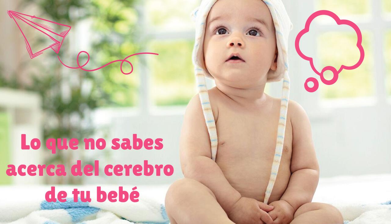 Lo que no sabes acerca del cerebro de tu bebé